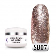 Гель паста Shine Bright platinum SB 07