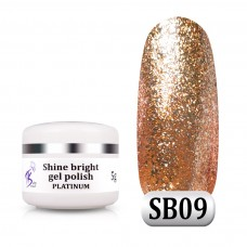 Гель паста Shine Bright platinum SB 09