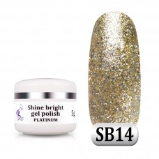 Гель паста Shine Bright platinum SB 14